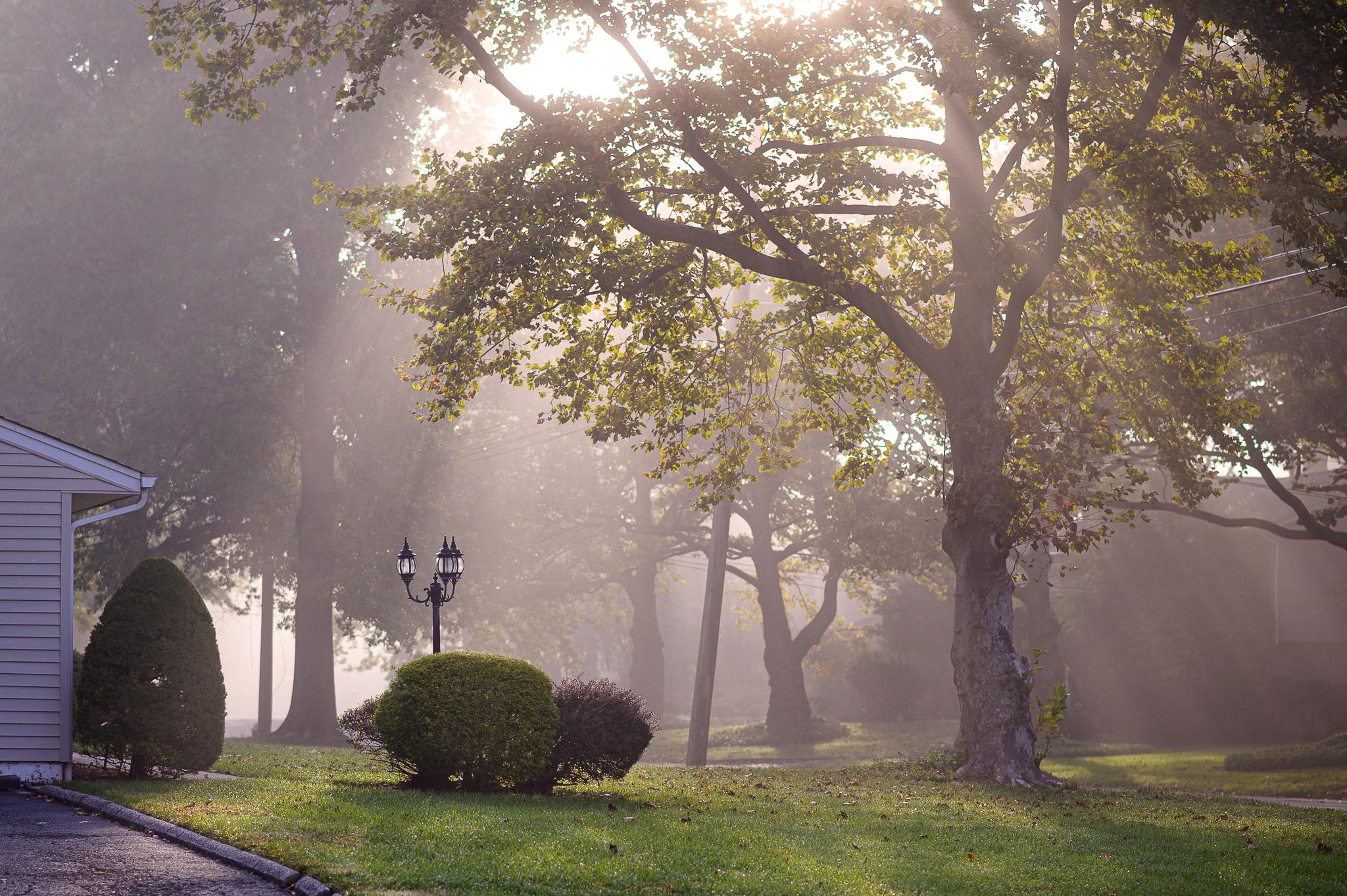 Foggy Morning in Harrington Park, NJ, by Julie Pavlova Photography